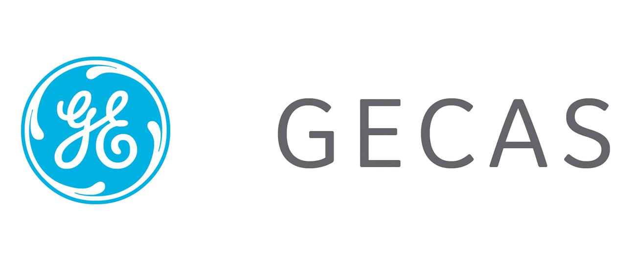 GECAS Appoints Jonty Nel as New Commercial Lead