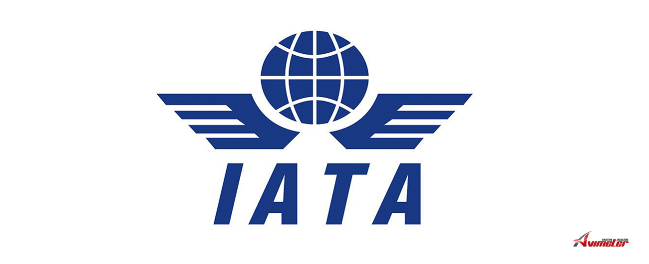 IATA: Air Freight Marks Modest Growth in October, Up 3.1%