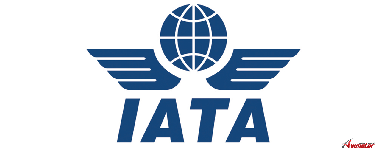 IATA: Air Cargo Demand Continues Negative 2019 Trend